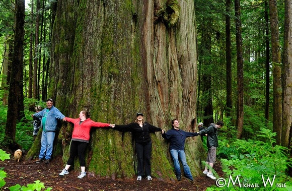 World Class Hiking Trails Sightseeing Bella Coola In The