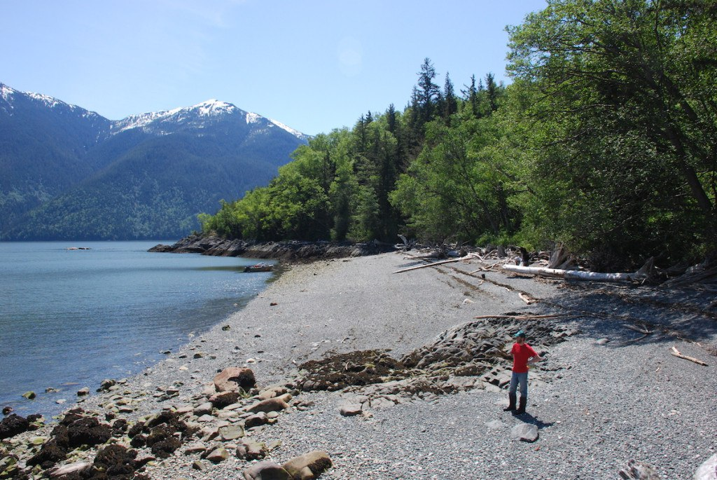 Bella Coola Harbour Tours