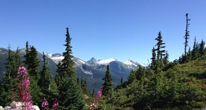 alpine hiking great bear rainforest