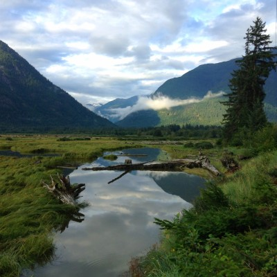 Bella Coola, Great Bear Rainforest, Estuary