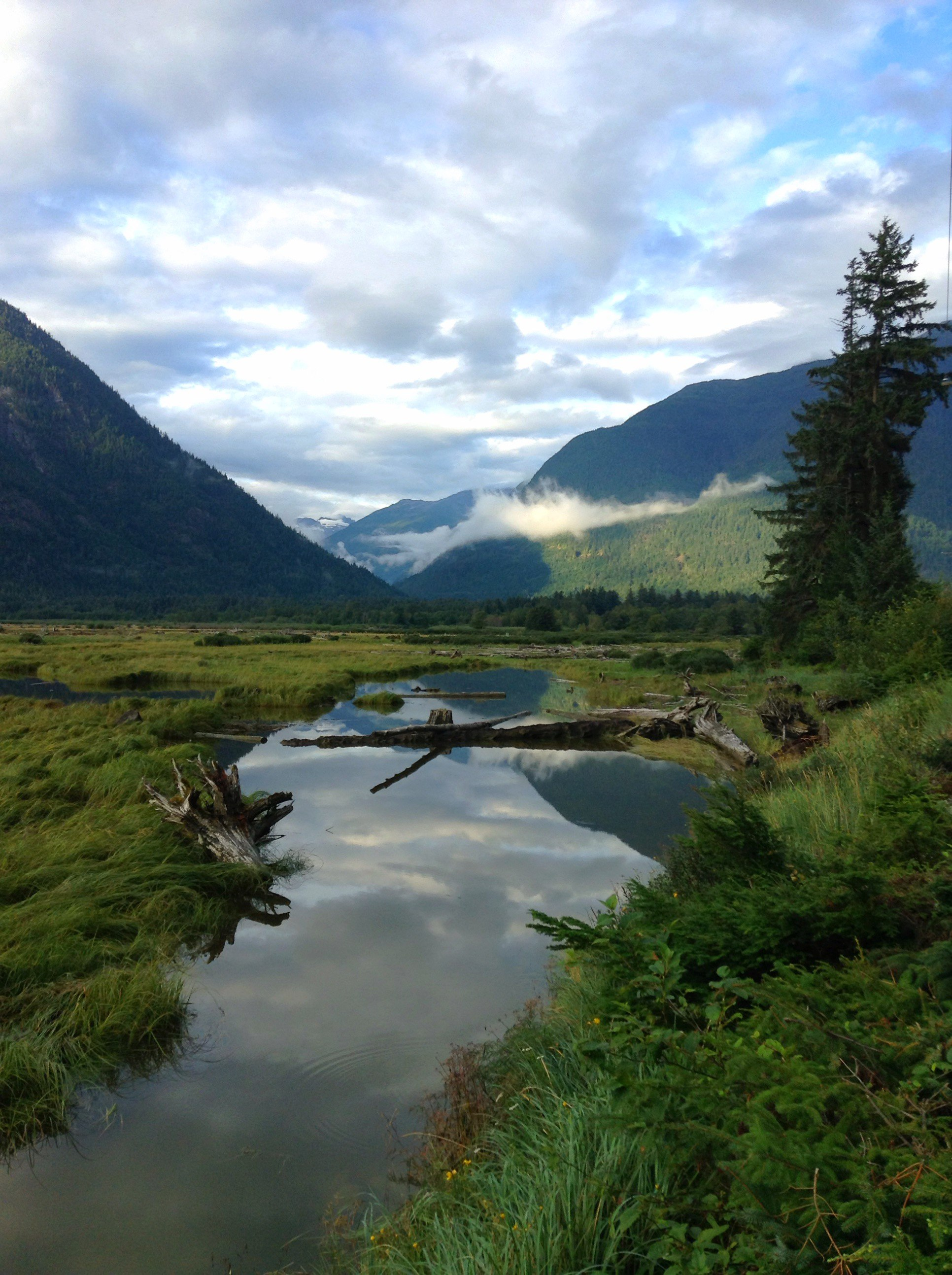Bella Coola Valley In The Great Bear Rainforest
