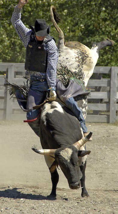 The 33rd Annual Bella Coola Rodeo