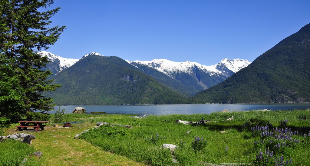 Great Bear Rainforest, Bella Coola, BC Canada