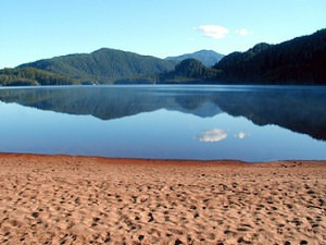 swim, bc coast, great bear rainforest, paradise